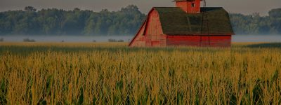 farm and crop insurance in Thibodaux Louisiana | Toups Insurance